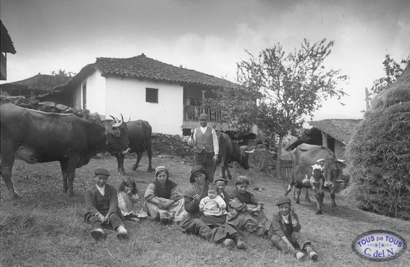 Nombres De Vacas Ii Aportaciones De Varios Colaboradores Tous Pa