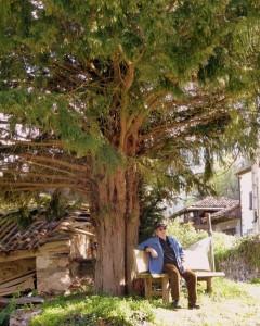 Pepe Avello bajo la sombra del tejo de Regla de Cibea, marzo de 2014